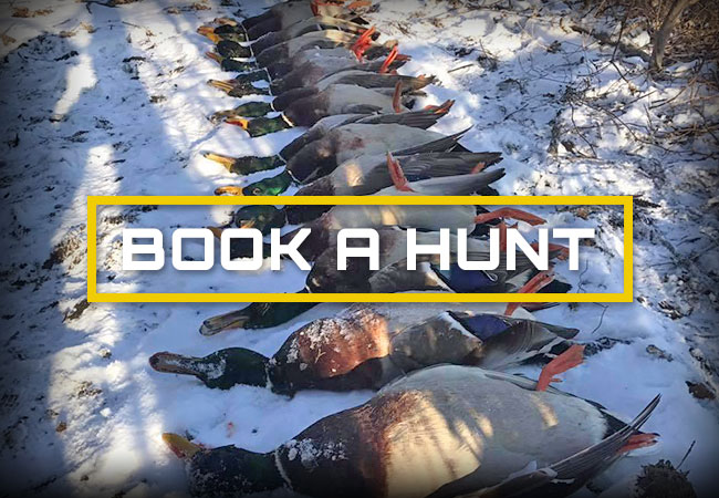 Book a Hunt with Duxmen Outfitters Inc.